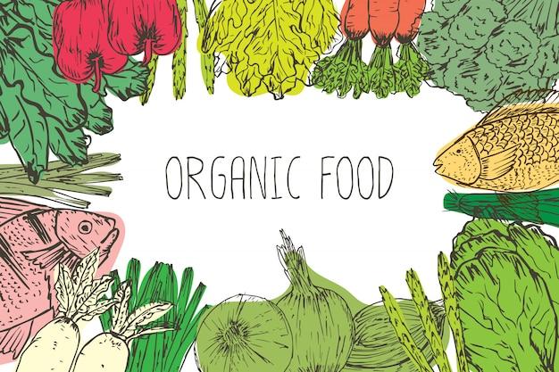Dibujado a mano fondo de alimentos orgánicos. hierbas orgánicas, especias y mariscos. dibujos de alimentos saludables establecer elementos para el diseño del menú. ilustracion vectorial Vector Premium