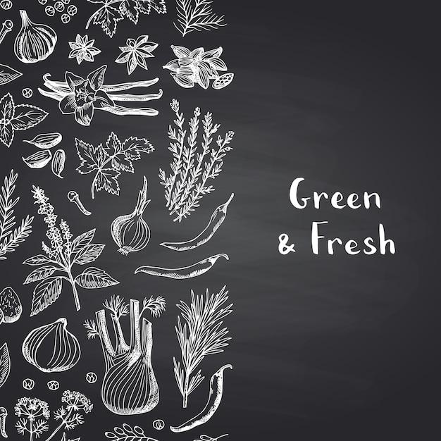 Dibujado a mano hierbas y especias sobre fondo de pizarra negra Vector Premium