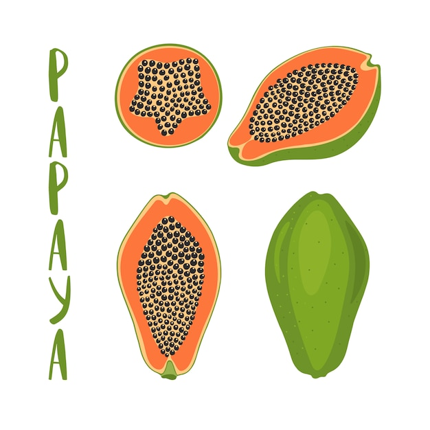 Dibujado a mano ilustración vectorial de papaya entera y en rodajas. Vector Premium