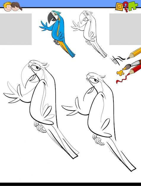 Dibujar Y Colorear Con Aves Guacamayas Descargar Vectores Premium