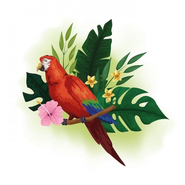 Dibujo de aves exóticas y flores tropicales. vector gratuito