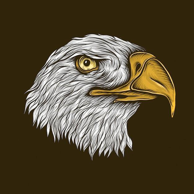 Dibujo a mano ilustración de cabeza de águila calva vintage Vector Premium
