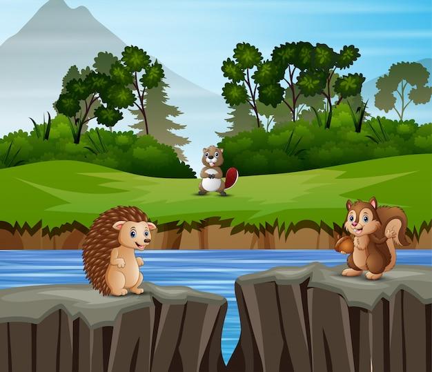 Dibujos animados de animales jugando en el fondo de la naturaleza Vector Premium