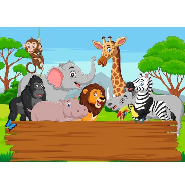 Dibujos animados de animales salvajes con tablero en blanco en la selva Vector Premium