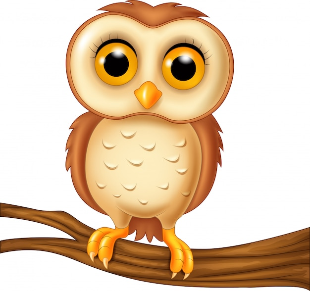 Dibujos Animados Gracioso Búho Pájaro Descargar Vectores Premium