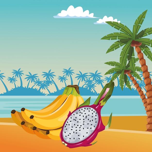 Dibujos animados de iconos de frutas tropicales exóticos vector gratuito