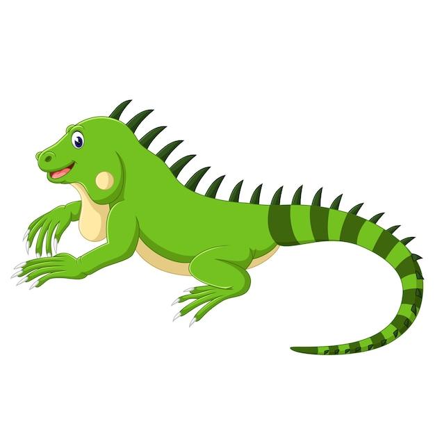Dibujos Animados De Iguana Descargar Vectores Premium