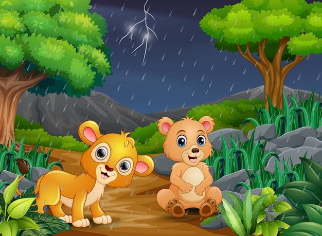 Dibujos animados de un oso y bebé león en un bosque bajo la lluvia Vector Premium