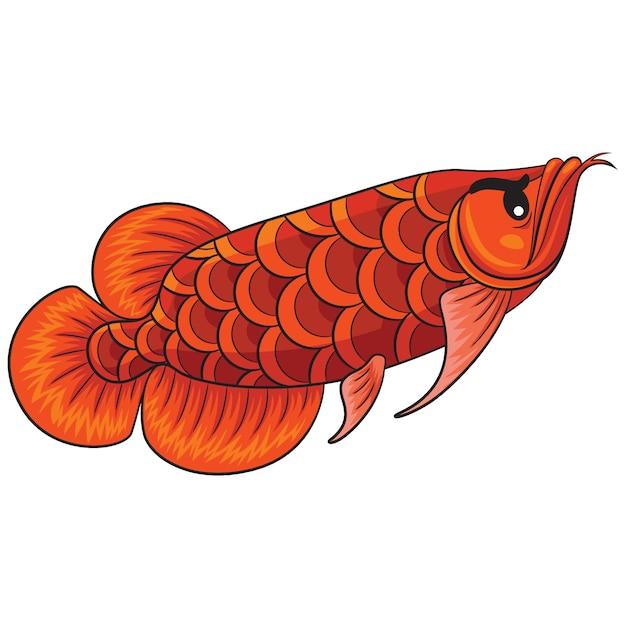 Dibujos animados de peces arowana Vector Premium