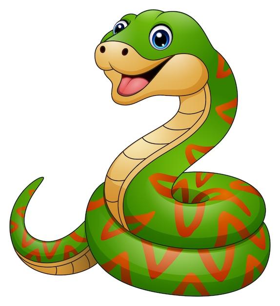 dibujos animados de serpiente verde descargar vectores premium