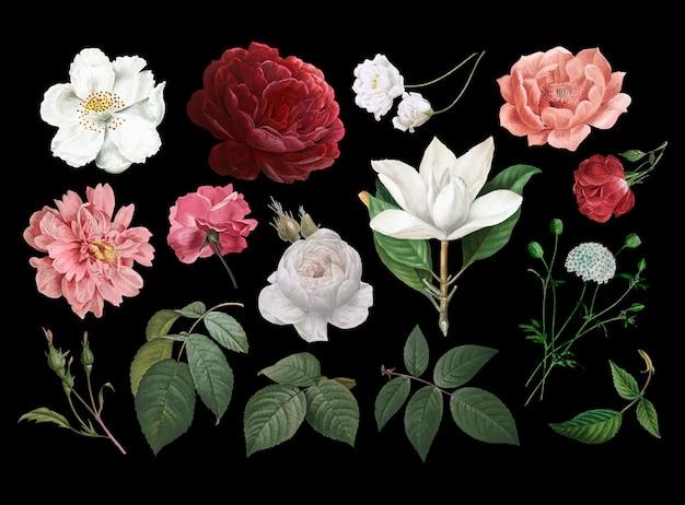 Dibujos de flores de la vendimia vector gratuito