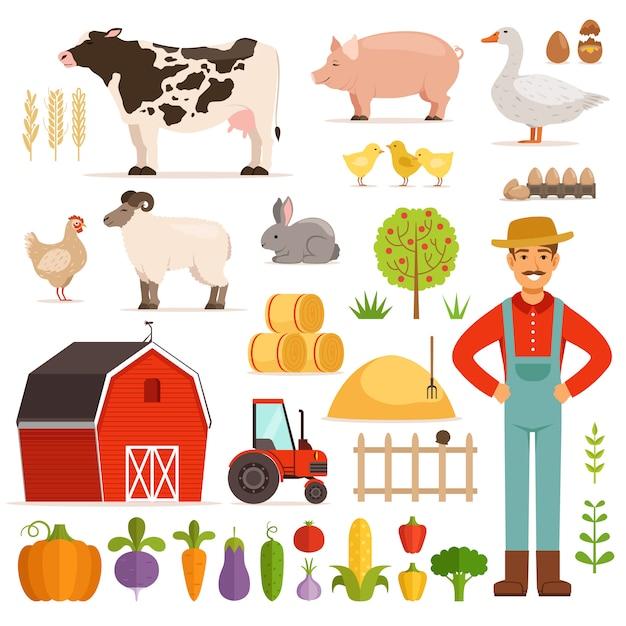 Diferentes elementos de la granja Vector Premium
