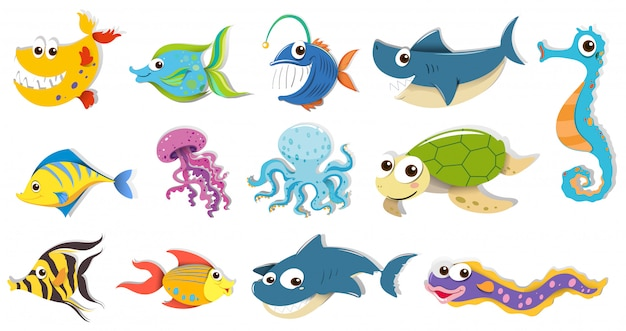 Diferentes tipos de animales marinos. vector gratuito