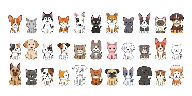 Diferentes tipos de perros y gatos de dibujos animados Vector Premium