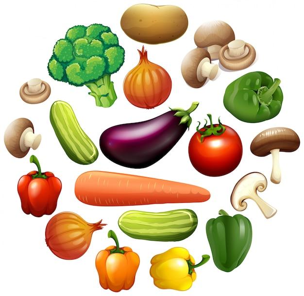 Diferentes tipos de vegetales vector gratuito