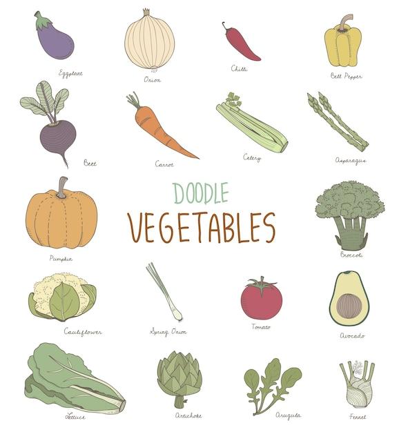 Diferentes Tipos De Vegetales Vector Premium
