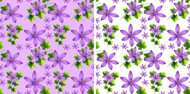 Flores Vectoriales Con Fondo Transparente: Diseño De Fondo Transparente Con Flores Púrpuras