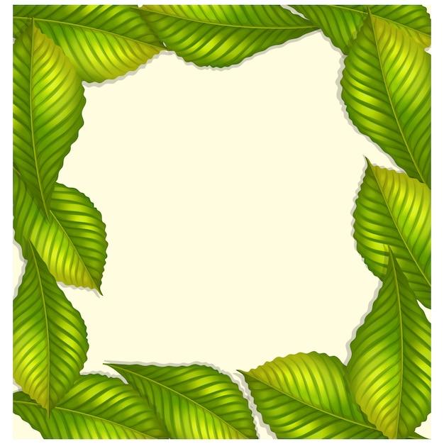 Diseño de marco de hojas verdes | Descargar Vectores gratis