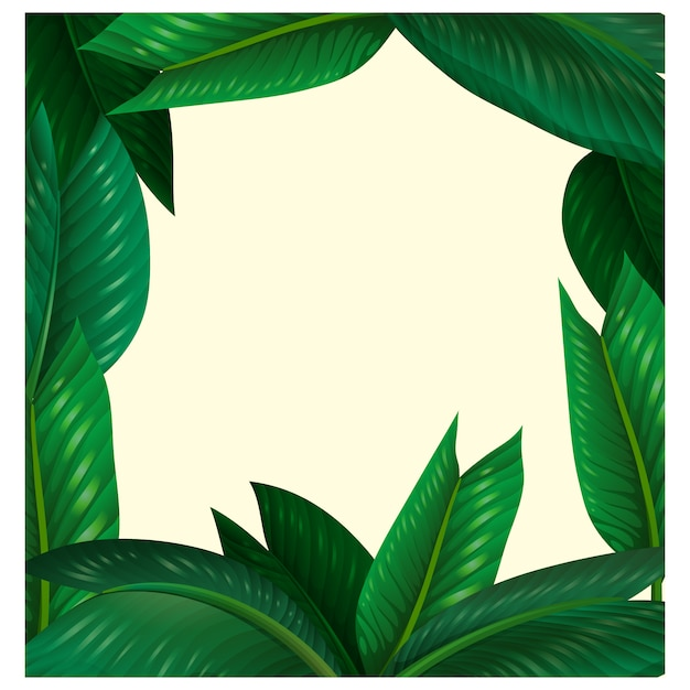 Diseño de marco de naturaleza   Descargar Vectores gratis
