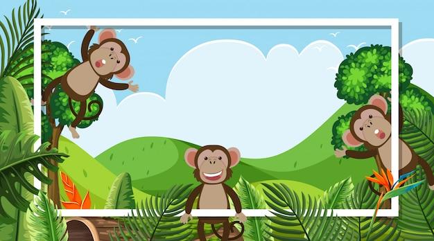 Diseño de marco con monos lindos en el bosque Vector Premium