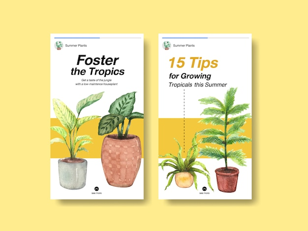 Diseño de plantilla de historia de instagram con plantas de verano y plantas de interior para redes sociales vector gratuito