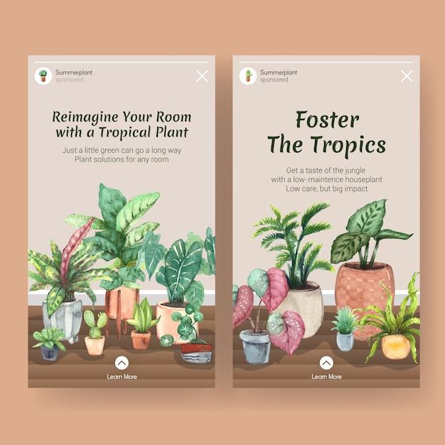 Diseño de plantillas con plantas de verano y plantas de interior para redes sociales, comunidad, internet y publicidad de acuarela vector gratuito