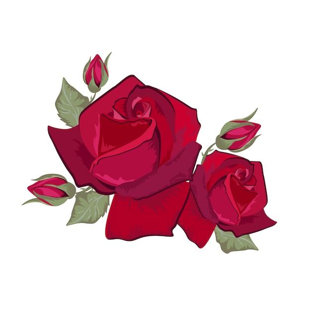 Diseño De Rosas Rojas Descargar Vectores Gratis