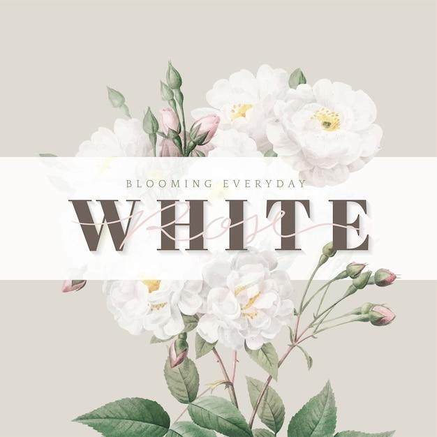 Diseño de tarjeta inspiradora de rosas blancas. vector gratuito