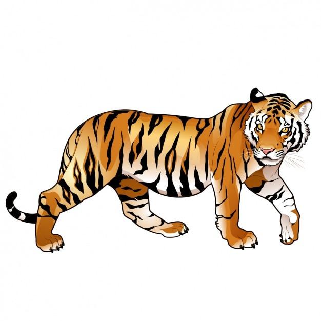 Diseño de tigre a color vector gratuito