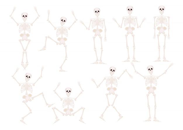 Divertidos esqueletos de danza y gimnasia aislados. Vector Premium