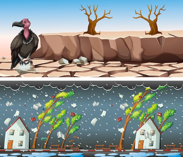 Dos escenas con sequía y tormenta. vector gratuito