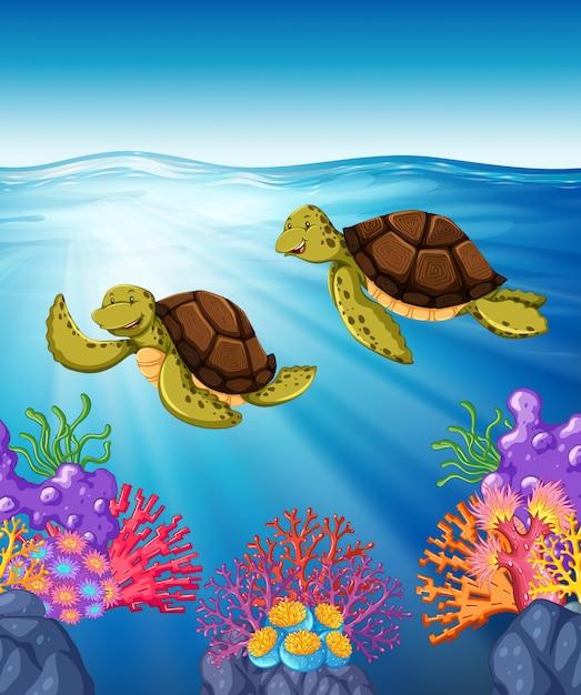 Dos tortugas nadando bajo el mar vector gratuito