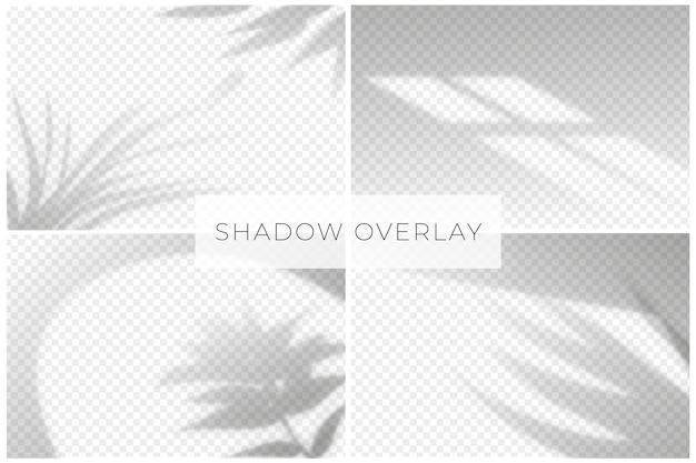 Efecto de superposición de sombras con fondo transparente Vector Premium