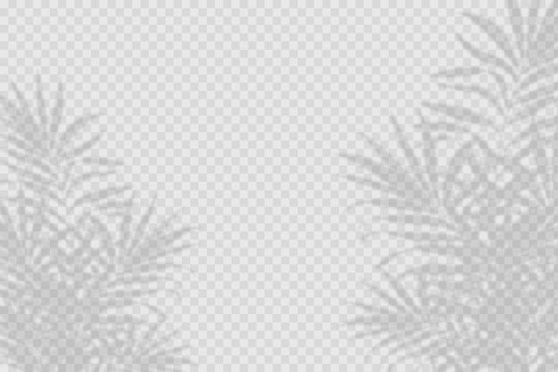Efecto de superposición de sombras transparentes vector gratuito