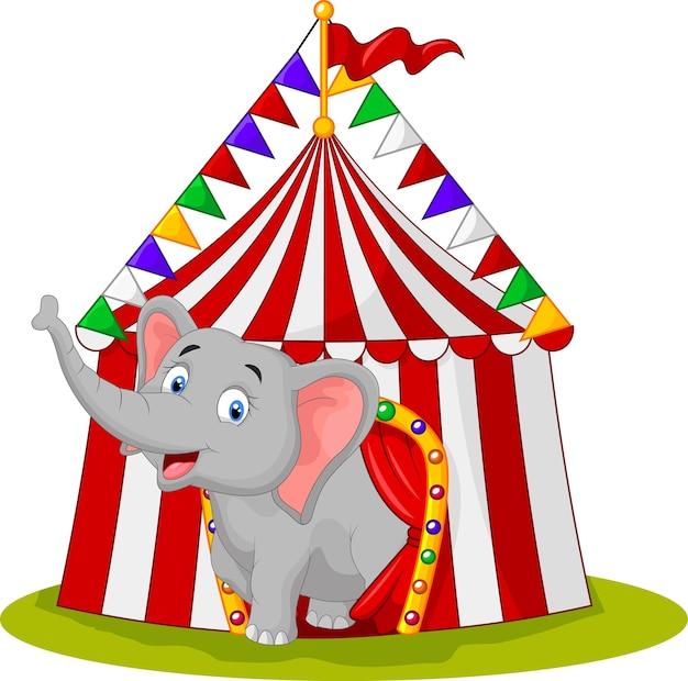 Elefante feliz en la carpa de circo Vector Premium