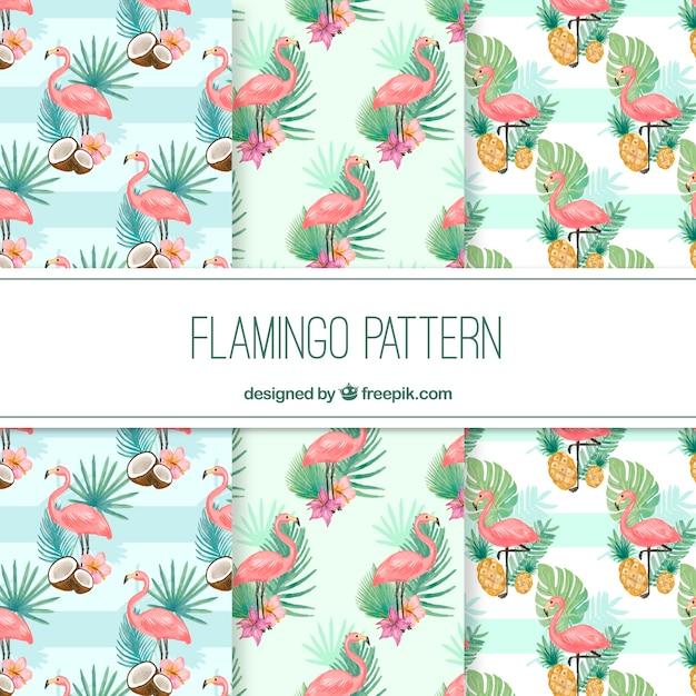 Elegante patrón de flamingo vector gratuito