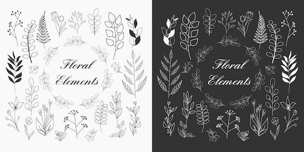Elementos florales dibujados a mano Vector Premium