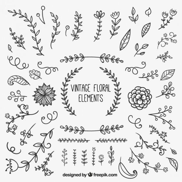 Elementos florales vintage vector gratuito