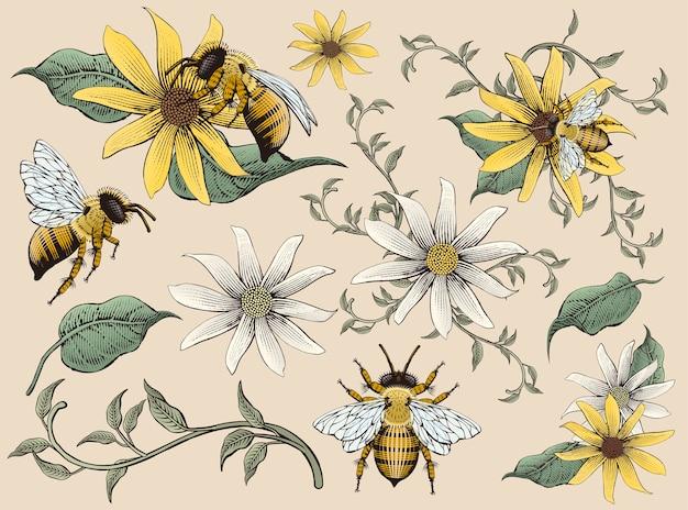 Elementos de flores y abejas de miel, estilo de sombreado de grabado retro dibujado a mano, tono colorido Vector Premium