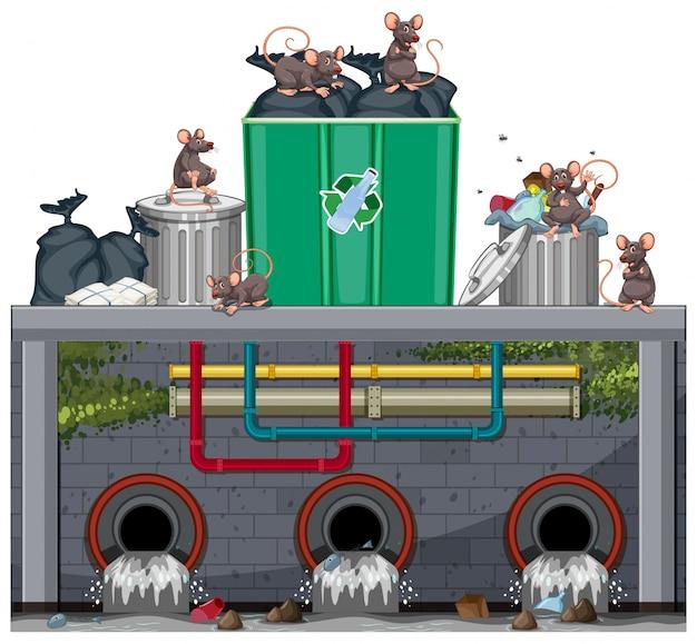 Eliminación de desechos insalubres con rata Vector Premium