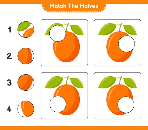 Empareja las mitades. coincidir con las mitades de ximenia. juego educativo para niños, hoja de trabajo imprimible Vector Premium