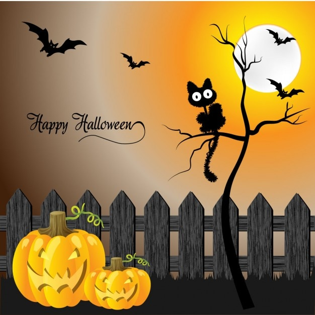 Cats And Pumpkins Pictures