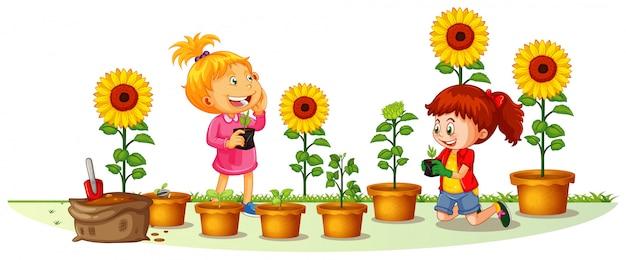 Escena con dos chicas plantando girasoles en el jardín. vector gratuito