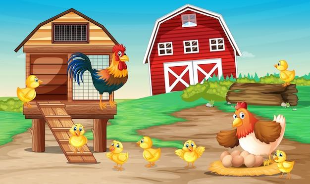 Escena de granja con gallinas vector gratuito