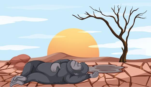 Escena con mono muriendo en tierra de sequía vector gratuito