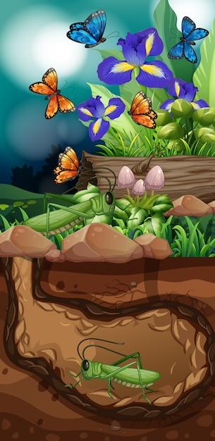 Escena de la naturaleza con saltamontes y mariposas vector gratuito