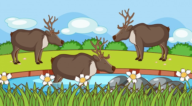 Escena con renos en jardín vector gratuito