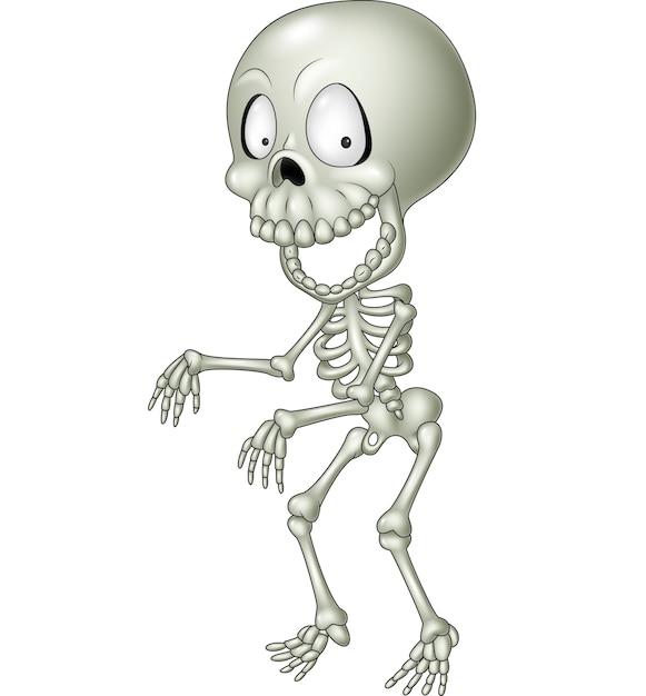Esqueleto humano divertido de dibujos animados | Descargar Vectores ...