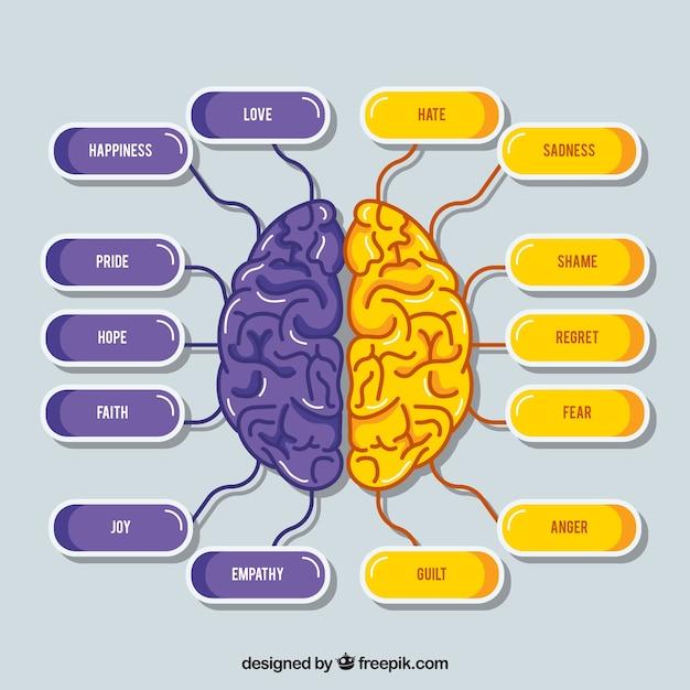 Esquema de cerebro morado y lila vector gratuito