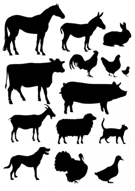 Establecer colección de siluetas de animales de granja aislado en blanco Vector Premium
